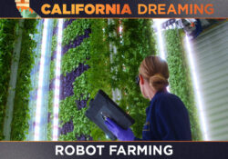 California Dreaming: Artificial intelligence and robots are helping farmers prepare for climate change crisis